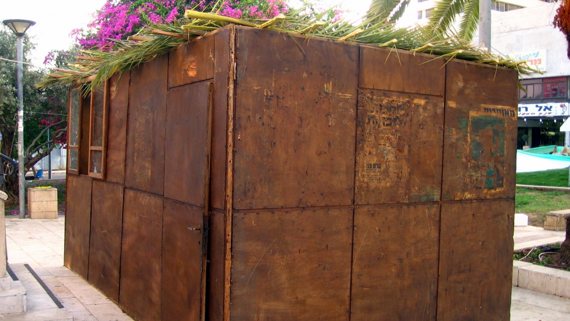 THOUGHTS ON SUKKOT